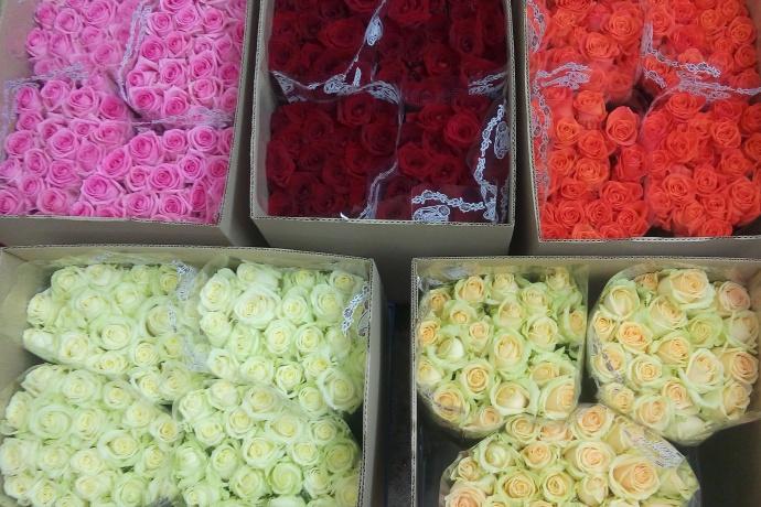Покупка цветов оптовая г екатеринбург — img 11