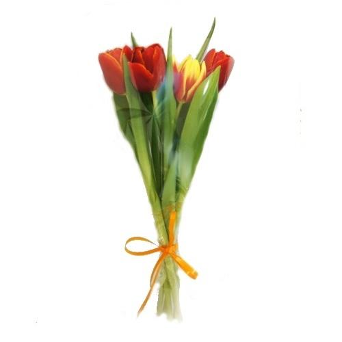 Дешевые цветы екатеринбург магазин — img 5